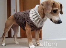 Cozy Crochet Dog Sweater