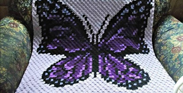 Purple Butterfly Blanket Pattern By The Crochet Couch