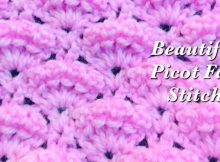 picot fan crochet stitch