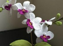 Crochet Orchid Pattern Gorgeous Flower