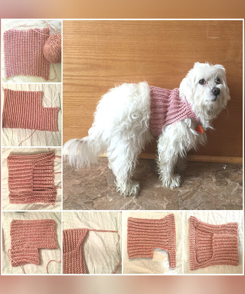 FOR DIY CROCHET DOG SWEATER FREE BY MESSY BEAUTIFUL FUN
