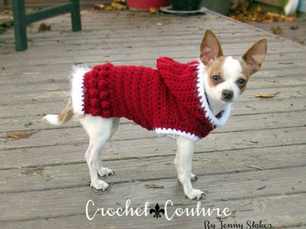 CROCHET DOG HOODIE PATTERN BY  JENNY STAKER INSPIRED