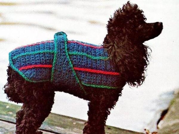 CROCHET DOG SWEATER CROCHET PATTERN BY MOMENTS IN TWINE