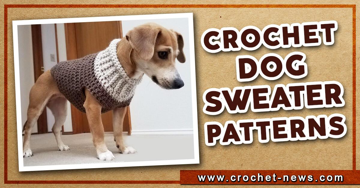 38 Crochet Dog Sweater Patterns Crochet News