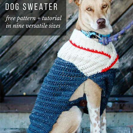 Amigurumi Dog in sweater | 450x450