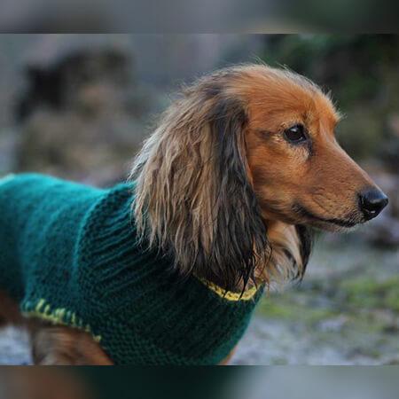 FREE CROCHET DOG SWEATER KNITTING PATTERN BY SAGA