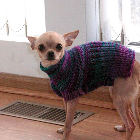 EASY KNITTING PATTERN FOR GARTER STITCH DOG SWEATER