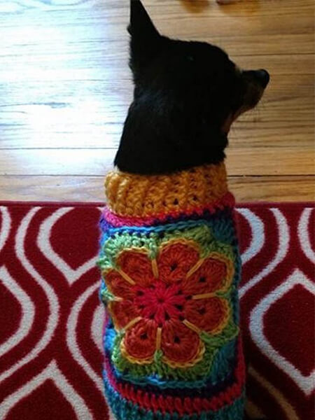 PET CLOTHES FROM A SQUARE MOTIF CROCHET DOG SWEATER WITH LEGS DIY TUTORIAL BY FCWHIMSEY