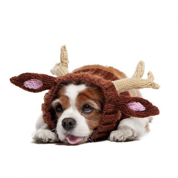 reindeer dog crochet hat pattern