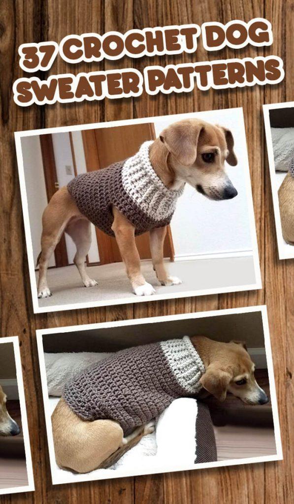 xxs crochet dog sweater pattern