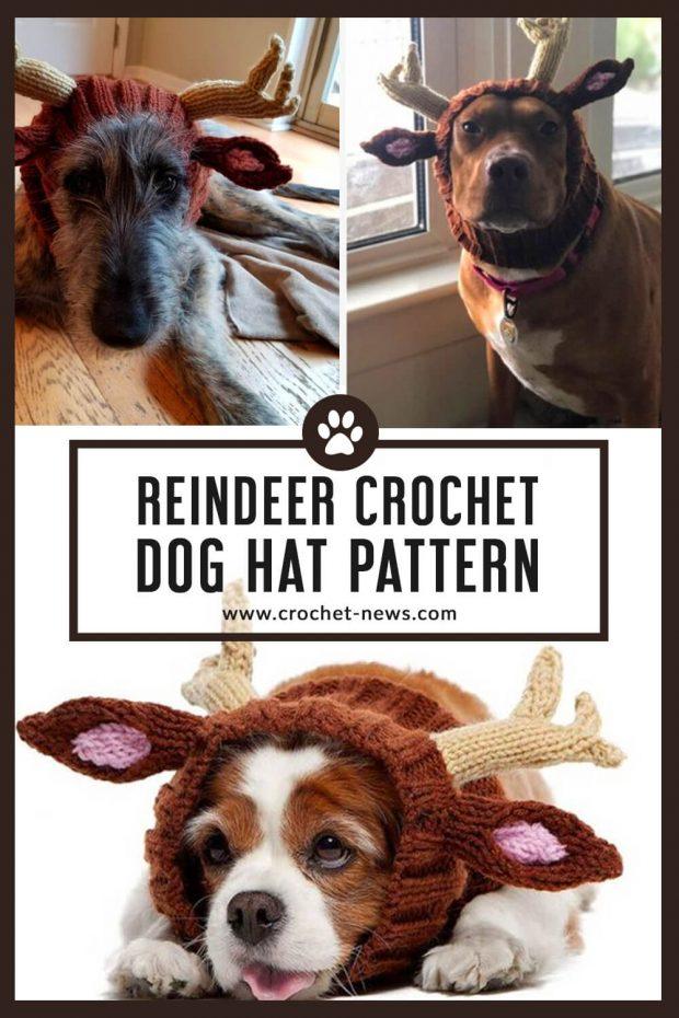 reindeer crochet dog hat pattern