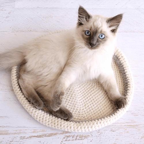 Crochet Cat Bed Pattern by Dabbles & Babbles