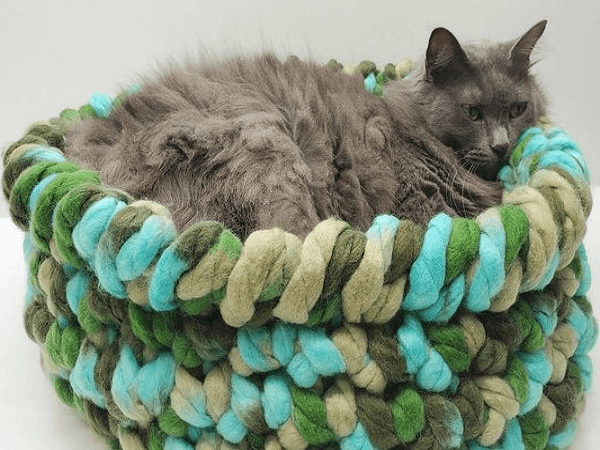 Easy Crochet Cat Bed Pattern by Bago Day Crochet