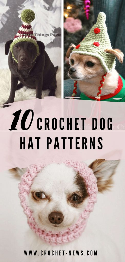 10 Crochet Dog Hat Patterns