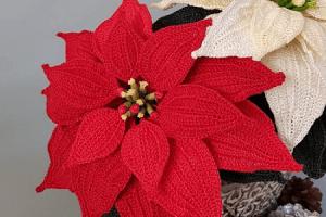 Crochet Christmas Poinsettia Pattern by Pippa Patterns Crochet
