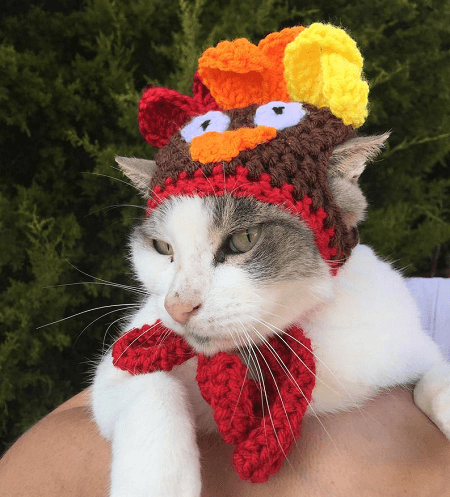 Crochet Turkey Hat Pattern For Pets by Okie Girl Bling n Things