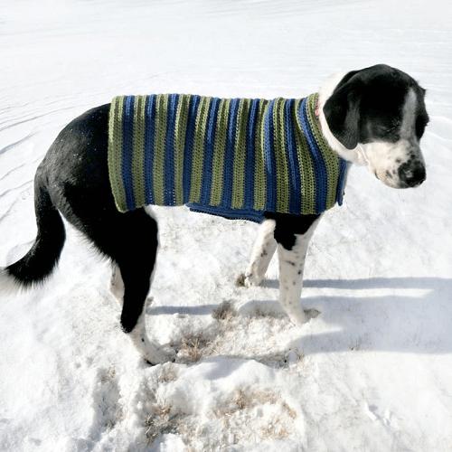 EASY ADJUSTABLE DOG SWEATER CROCHET PATTERN BY CROCHET SPOT PATTERNS