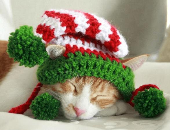 Cat Elf Hat Crochet Pattern by Pawsome Crochet