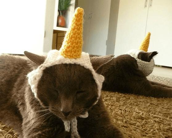 Crochet Unicorn Cat Hat Pattern by Zxcvvcxz