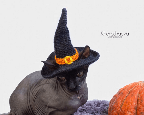 Witch Hat For Cat Crochet Pattern by Clothes For Cat