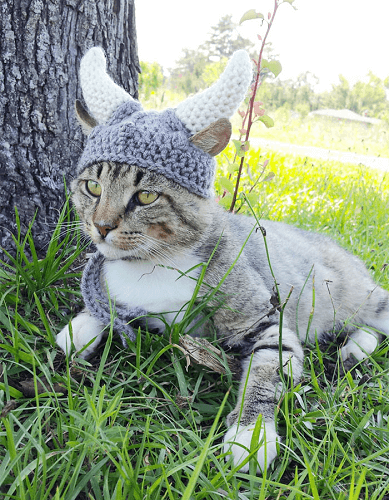 Viking Hat For Cats Crochet Patter by I Heart Needle Work