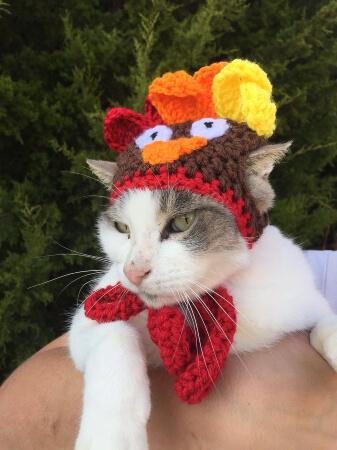 Cat Turkey Hat Crochet Pattern by Okie Girl Bling N Things