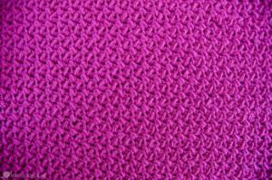 Elizabeth Stitch Crochet