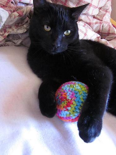 Big Ball Cat Toy Crochet Pattern by Melissa's Crochet Patterns