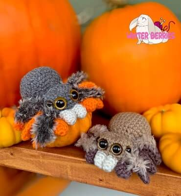 Baby Spider Crochet Pattern by Winter Berries BC