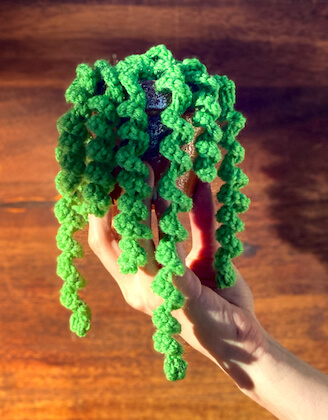 Dangling Curly Plant Crochet Pattern by The Hook Nook Life
